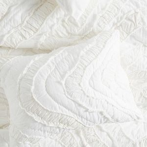 1 Anthropologie Textured Sham